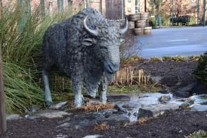 Buffalo at BT
